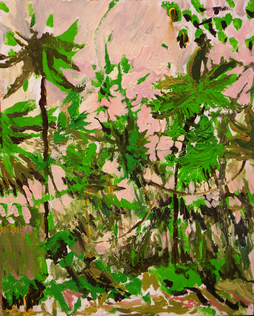 web Landscape Jungle Philippeans John DeFeo